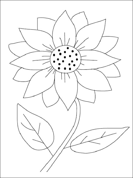 Sunflower coloring clipart