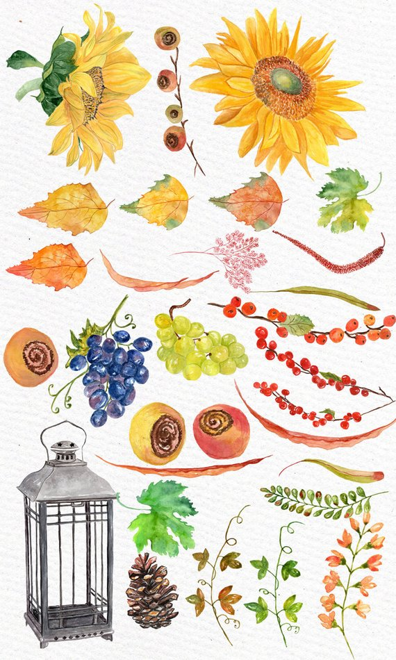 Sunflower fall clipart watercolor image library stock Autumn watercolor clipart: \