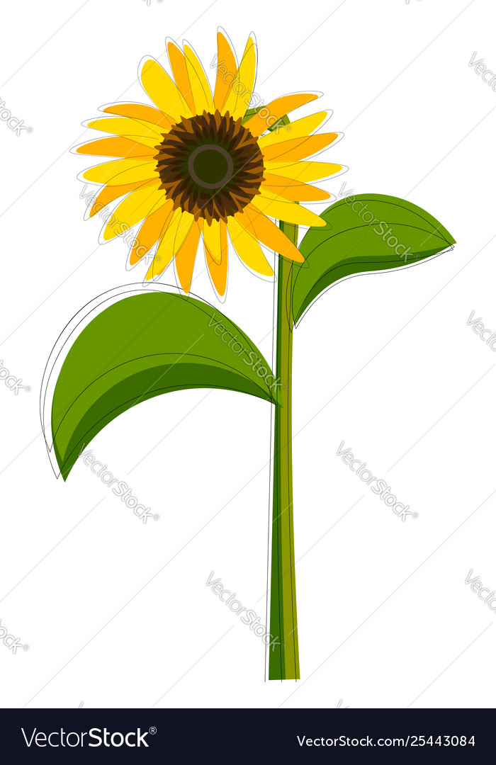 Sunflower stock clipart clipart royalty free library Clipart a sunflower set isolated on clipart royalty free library