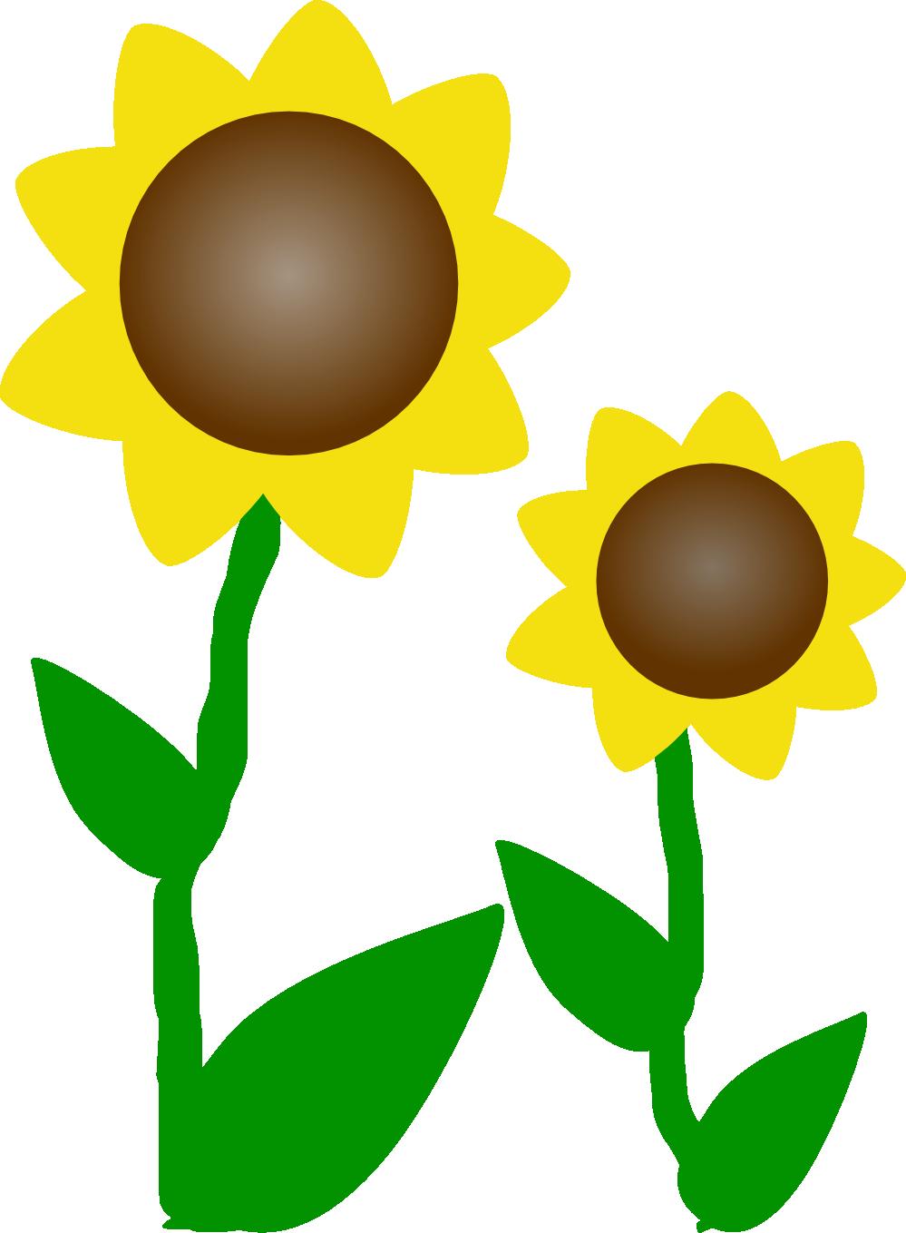 Sunflower sun clipart image transparent Sunflower Clipart | Clipart Panda - Free Clipart Images image transparent