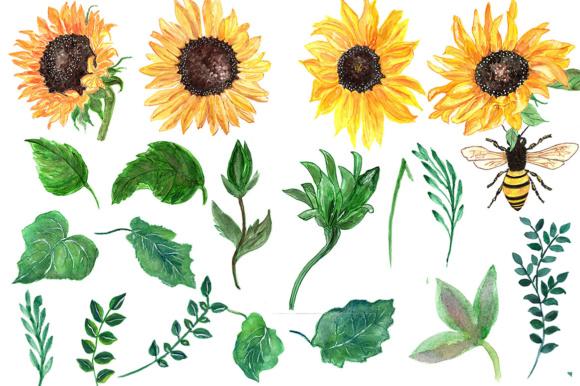 Sunflower watercolor clipart banner Sunflower watercolor clip art banner
