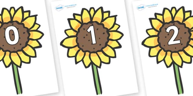 Sunflower with 10 petals clipart counting petals clip art royalty free download FREE! - Numbers 0-31 on Sunflowers - 0-31, foundation stage ... clip art royalty free download