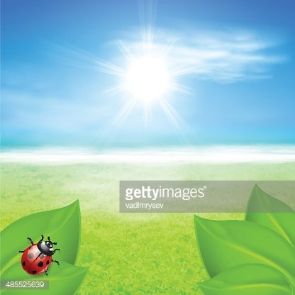 Sunny grass background clipart graphic royalty free library Sunny Background With Green Grass and Ladybird premium ... graphic royalty free library