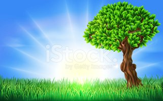 Sunny grass background clipart jpg free download Sunny Field Tree Background stock vectors - Clipart.me jpg free download