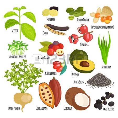 Super food clipart jpg royalty free stock 570 Superfood Stock Vector Illustration And Royalty Free Superfood ... jpg royalty free stock