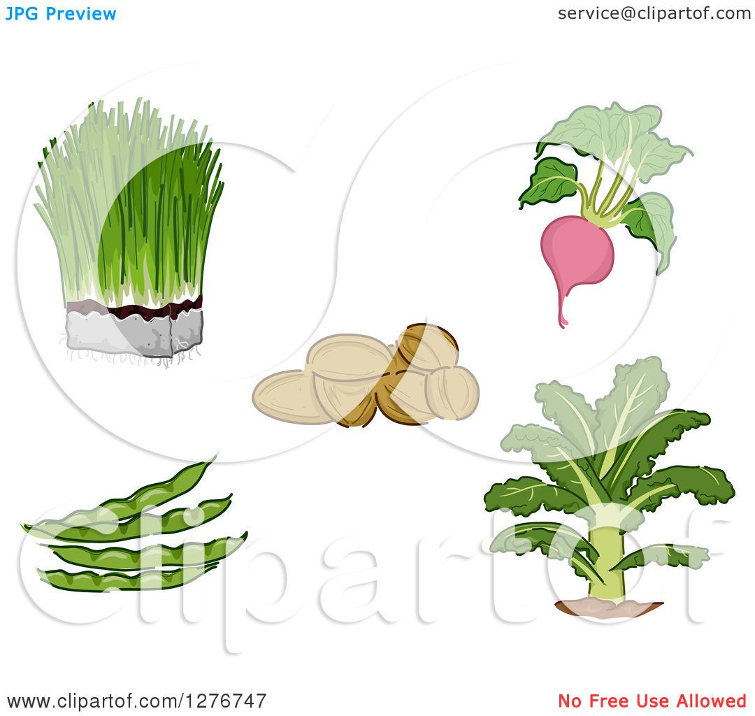 Super food clipart png free stock Super food clipart - ClipartFox png free stock