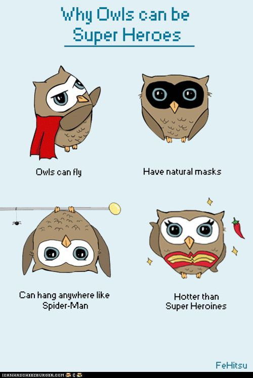 Super hero owl clipart freeuse stock Why Owls Can Be Superheroes, also Taylor should be an owl-themed ... freeuse stock