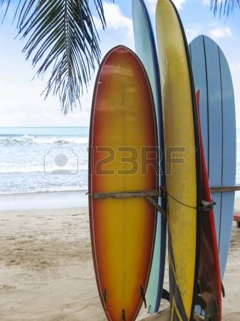 Surfboard clipart standing palm tree jpg library library Surfboards Images & Stock Pictures. Royalty Free Surfboards Photos ... jpg library library