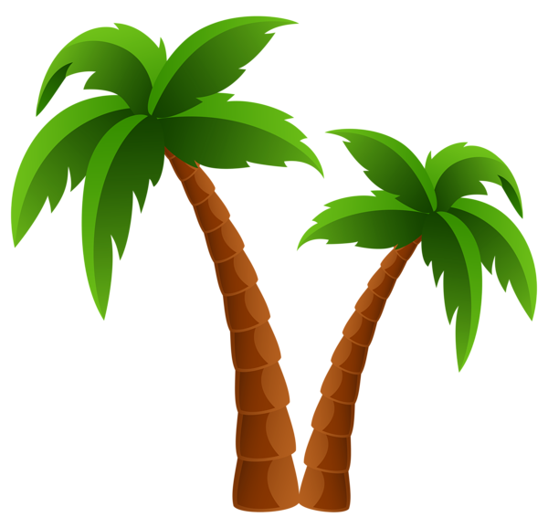 Palm tree with coconuts clipart freeuse stock Two Palm Trees PNG Clipart Image | Summer clip | Pinterest | Clipart ... freeuse stock