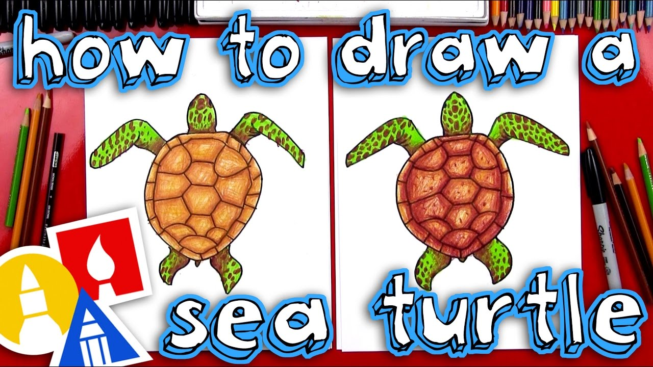 Surfing turtle new years clipart image royalty free download How To Draw A Realistic Sea Turtle image royalty free download