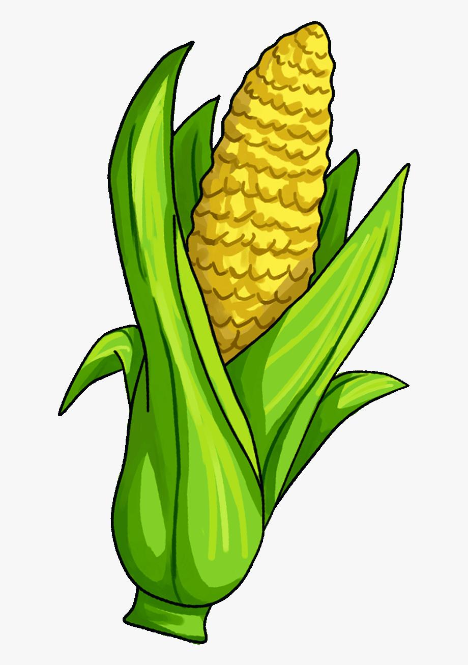 Surprising clipart clip art transparent download Surprising Corn Clipart For Free Fruit Names A With ... clip art transparent download