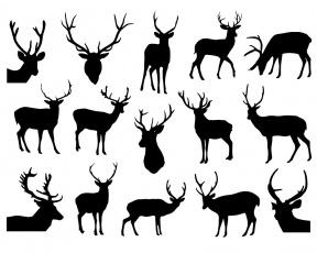 Sven christmas clipart svg stock Sven the reindeer christmas clipart - Clip Art Library svg stock