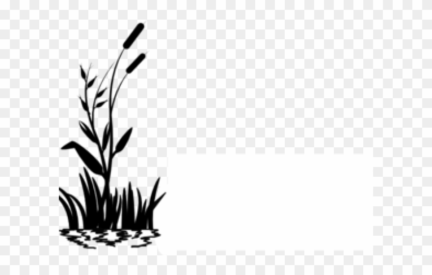 Swamp black and white clipart vector transparent download Swamp Clipart Dark - Grass Black And White Clipart - Png ... vector transparent download