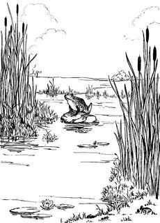 Swamp black and white clipart clip freeuse Black and white swamp clipart 1 » Clipart Portal clip freeuse