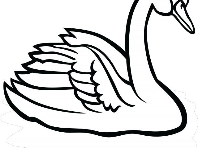 Swan black and white clipart banner free download Black Swan Clipart Katayam - Swan Black And White Clipart ... banner free download