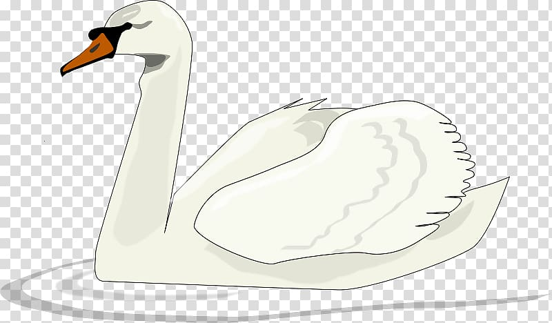 Swan clipart with no background