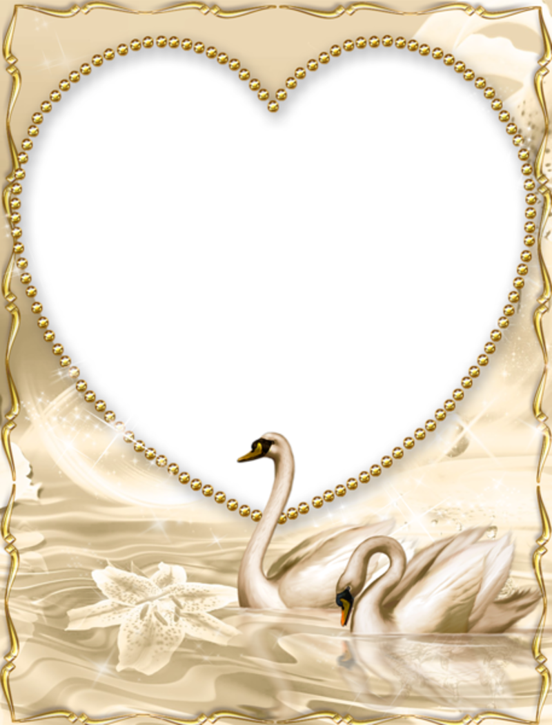 Two swans making a heart clipart clipart transparent download Beautiful_Golden_PNG_Frame_with-Swan.png | Книга пожеланий ... clipart transparent download