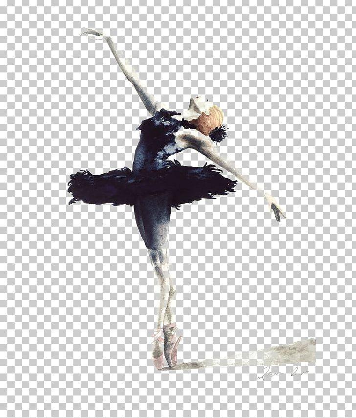 Swan lake black and white free clipart png royalty free download Ballet Dancer Swan Lake Cygnini Drawing PNG, Clipart, Balle ... png royalty free download