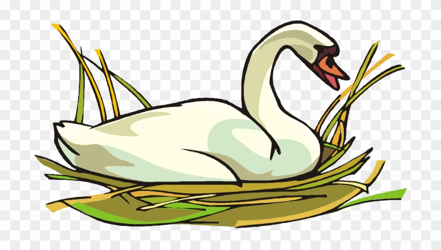 Swans clipart clip art royalty free library Swan Clipart Transparent - Swan Clipart - Png Download ... clip art royalty free library