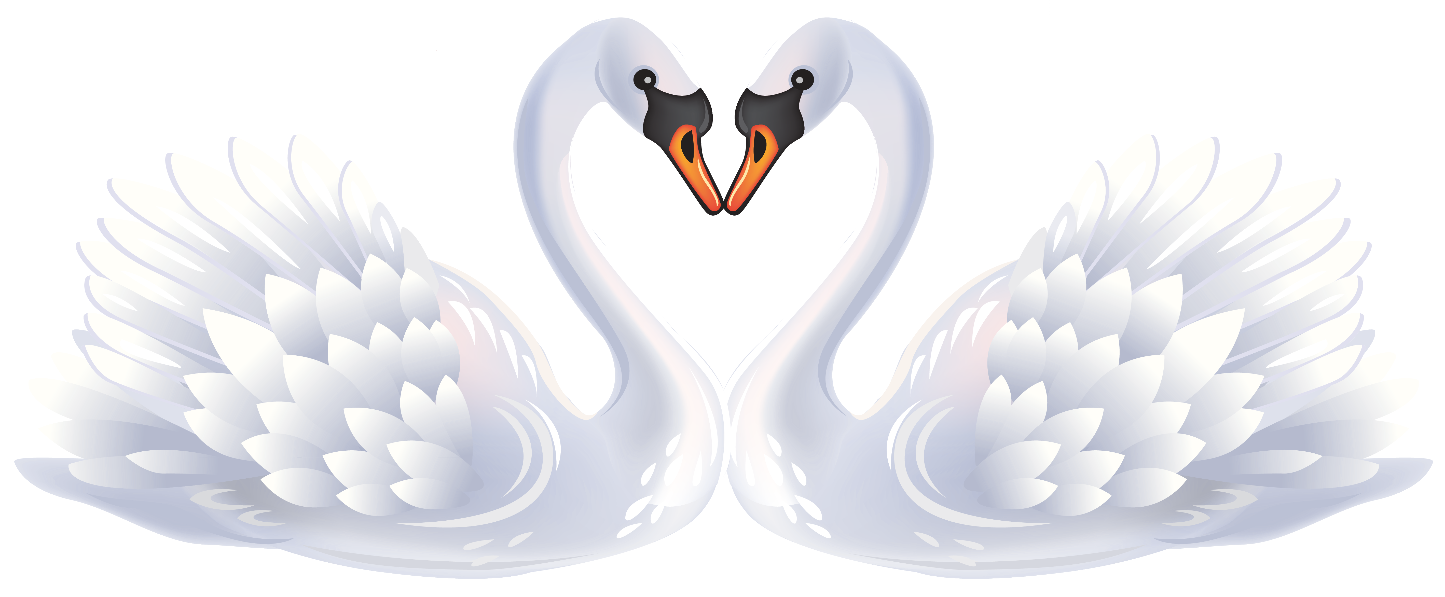 Swans clipart vector library library Valentine Swans PNG Clipart | Gallery Yopriceville - High ... vector library library