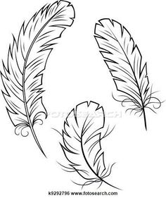 Swans feather clipart
