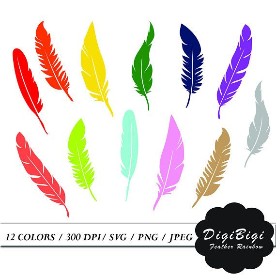 Swans feather clipart clipart free download Feather Clipart, Rainbow Feather Clip Art, Clipart Stickers ... clipart free download
