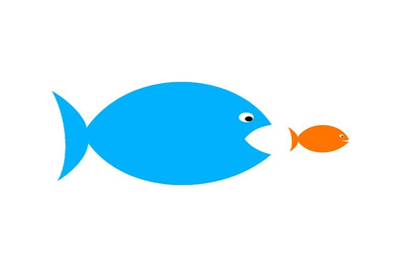 Swarms of fish clipart png free stock Docker Acquires Conductant, Plans to Integrate Aurora with ... png free stock