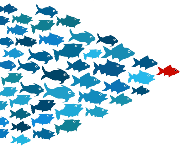 Swarms of fish clipart clip black and white stock Download Free png School of Fish Transparent PNG - DLPNG.com clip black and white stock