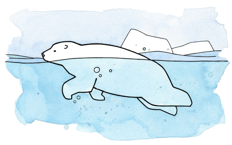 Swimming bear clipart graphic royalty free download Swimming Polar Bear Clipart graphic royalty free download