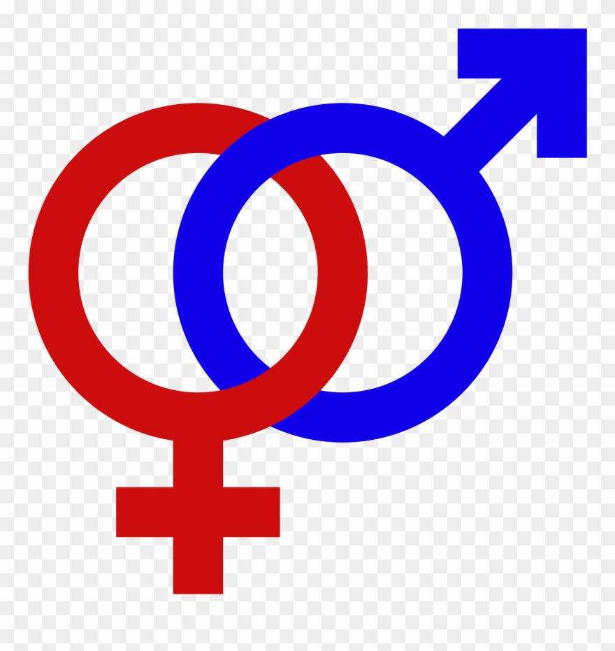 Symbol male female clipart banner transparent stock Male Female Gender Signs Gender Symbol Set Male Female ... banner transparent stock