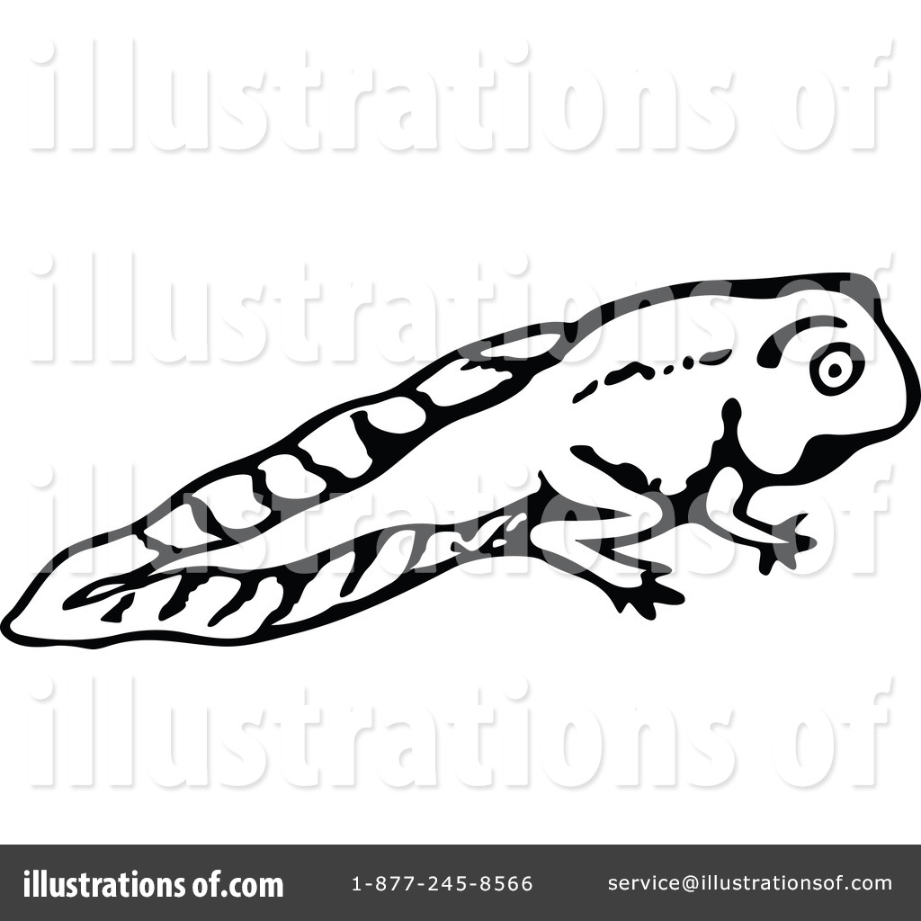 Tadpoles black and white clipart jpg Tadpole Clipart #1180199 - Illustration by Prawny Vintage jpg