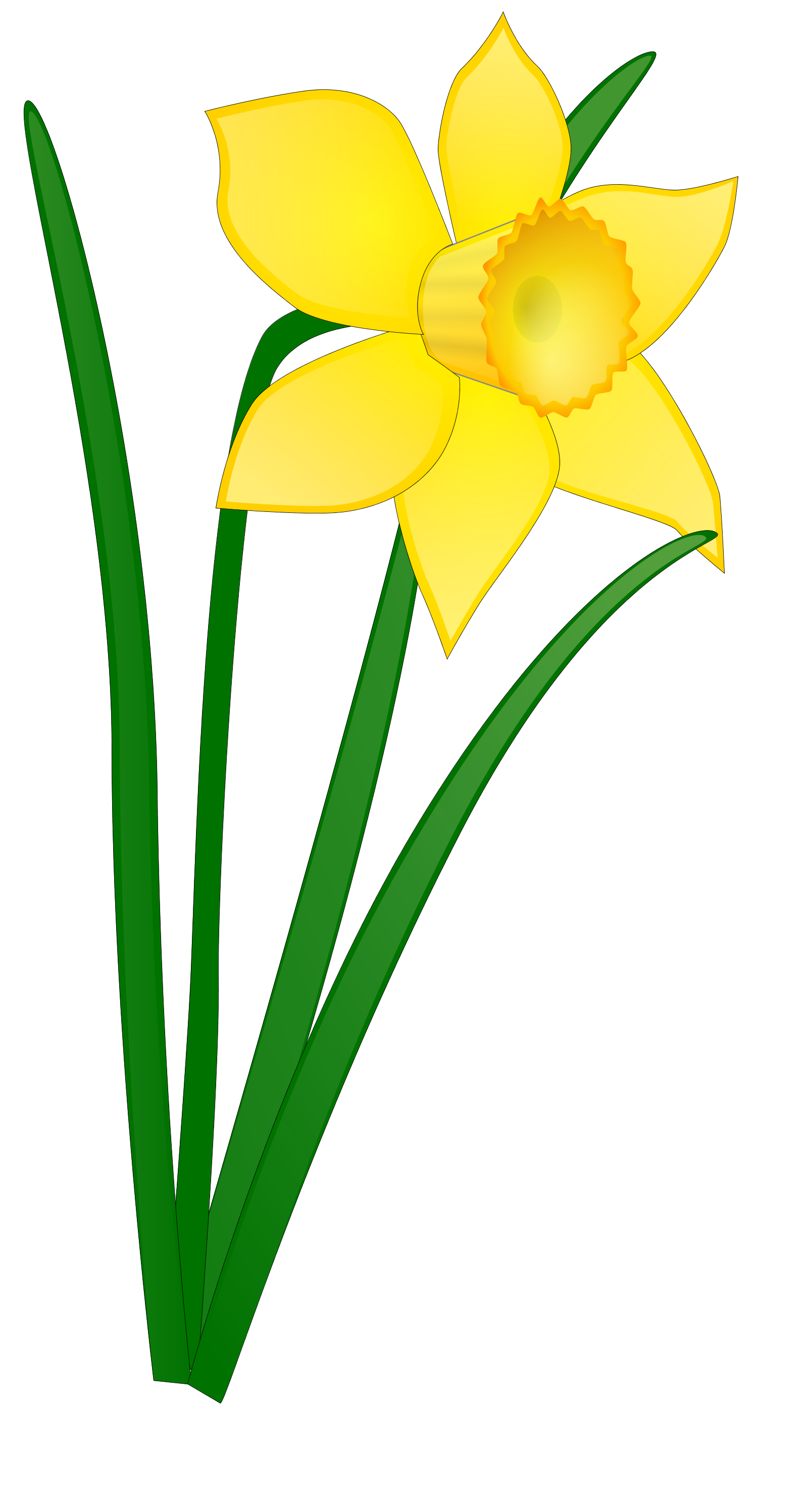 Tall flower clipart clip free library Daffodil Flower Clip Art | Clipart Panda - Free Clipart Images clip free library