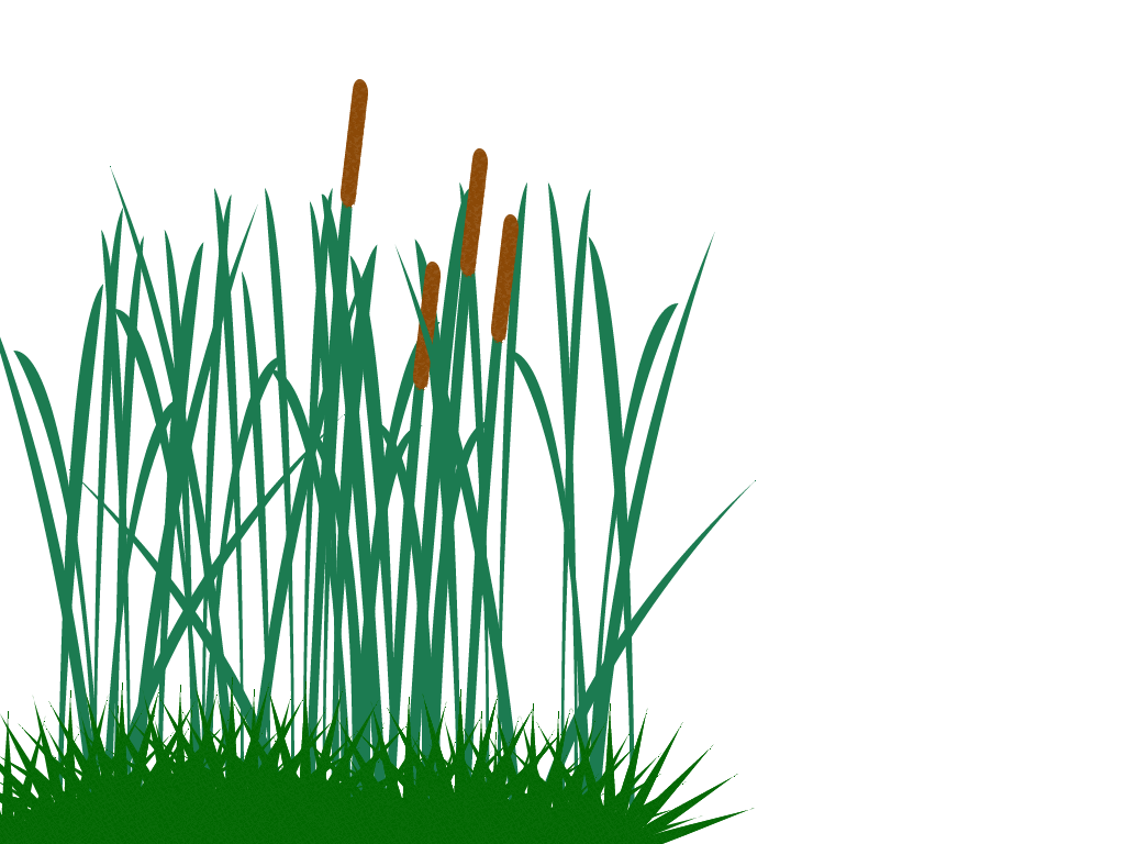 Pictures of tall grass with flowers clipart banner free Tall Grass Clip Art Png #44174 - Free Icons and PNG Backgrounds banner free