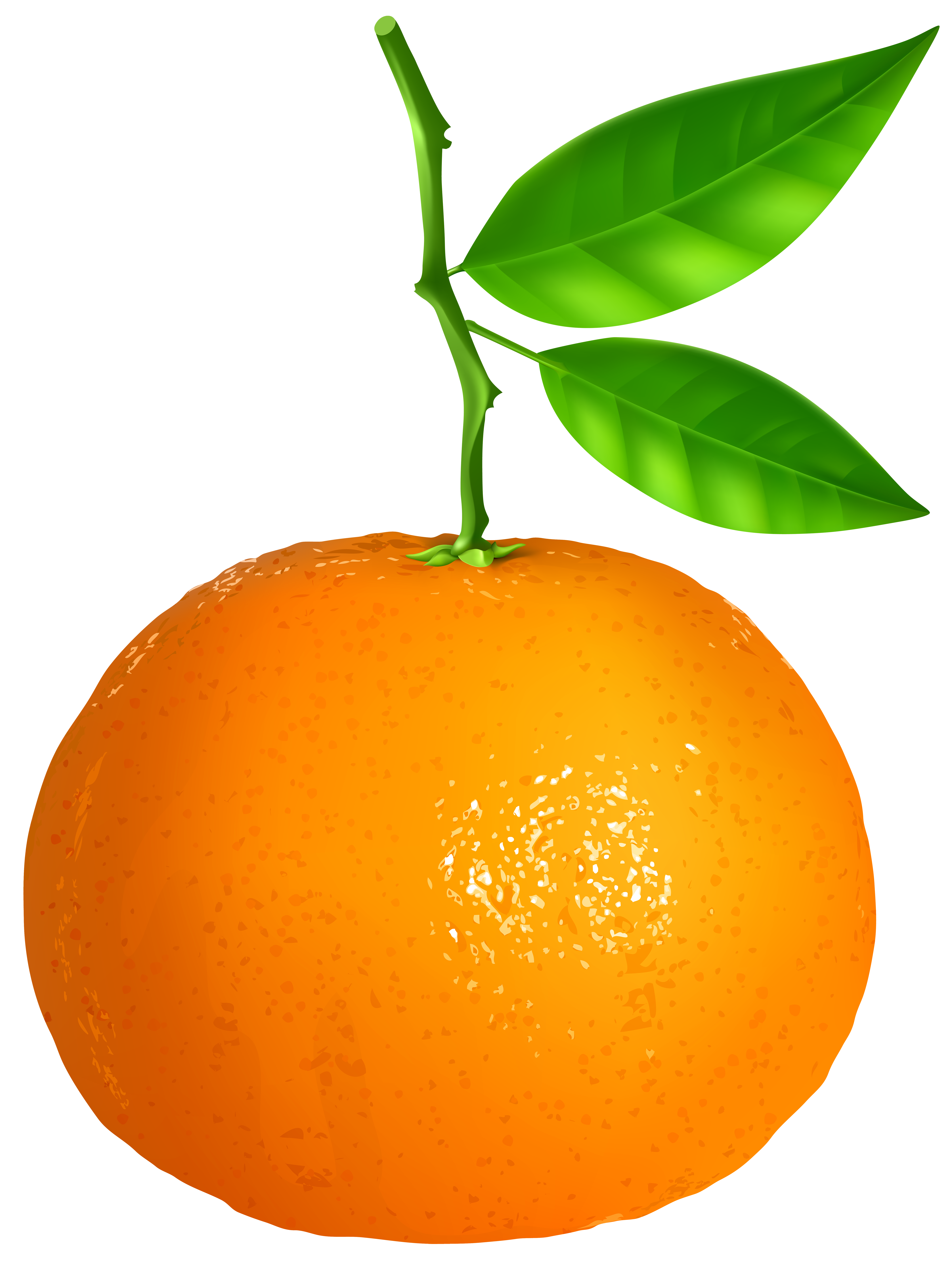 Tangine clipart clipart freeuse download Tangerine Transparent PNG Clip Art Image | Gallery ... clipart freeuse download