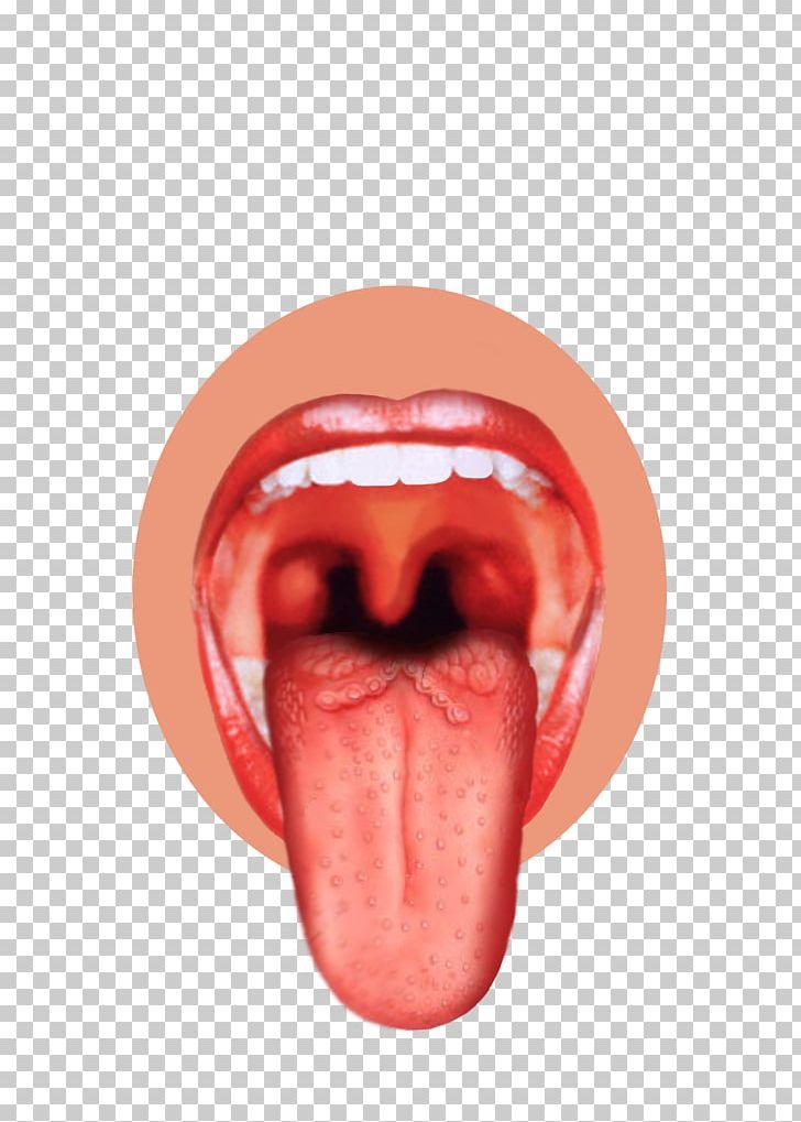 Taste buds clipart clip art transparent Taste Bud Tongue Map Sense PNG, Clipart, Bitterness, Bud ... clip art transparent