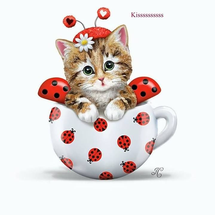 Tea cup cat clipart clipart freeuse download Pin by Julia metz on I love Cats | Cat clipart, Kittens, Cats clipart freeuse download
