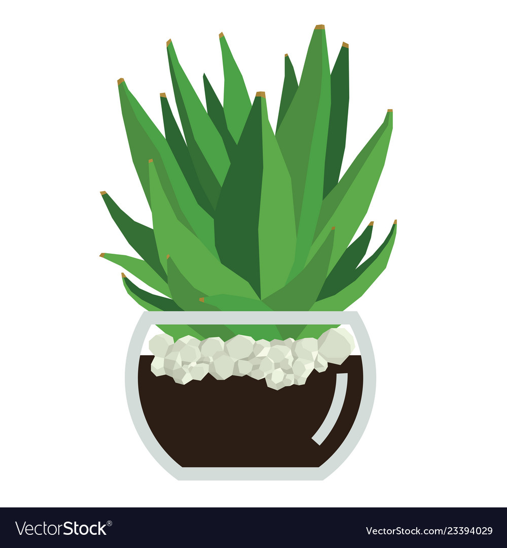 Tea pot with succulent clipart banner free Succulent plant in glass pot banner free