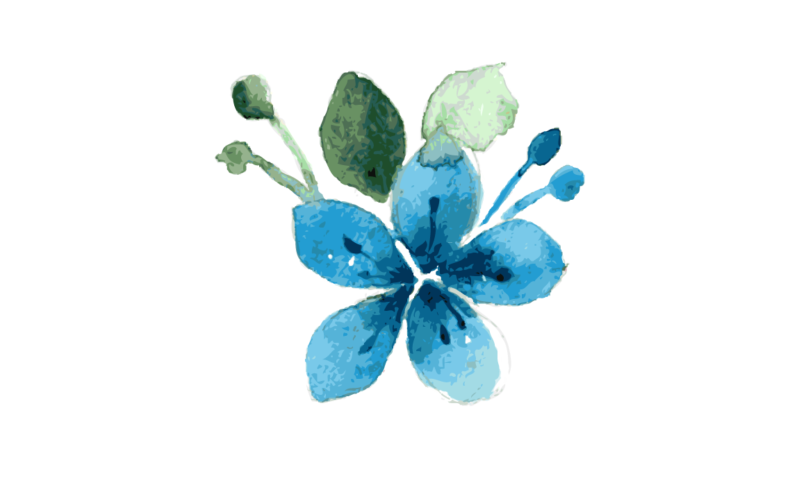 Teal watercolor flower clipart clip art library library blue flower watercolor by ZerrineArt | TheHungryJPEG.com clip art library library