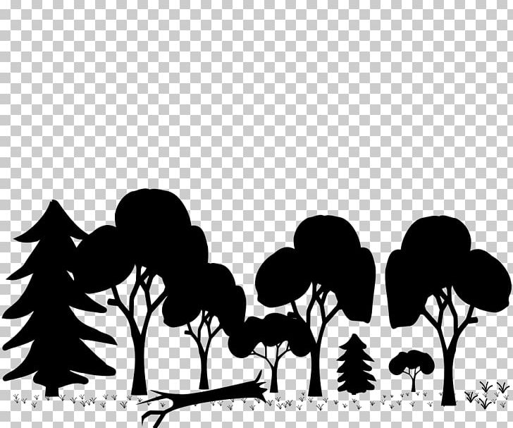 Temperate clipart graphic free library Woodland Temperate Broadleaf And Mixed Forest Tree PNG ... graphic free library