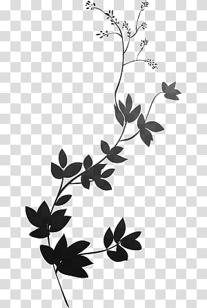 Tendril clipart stock Tendril transparent background PNG cliparts free download ... stock