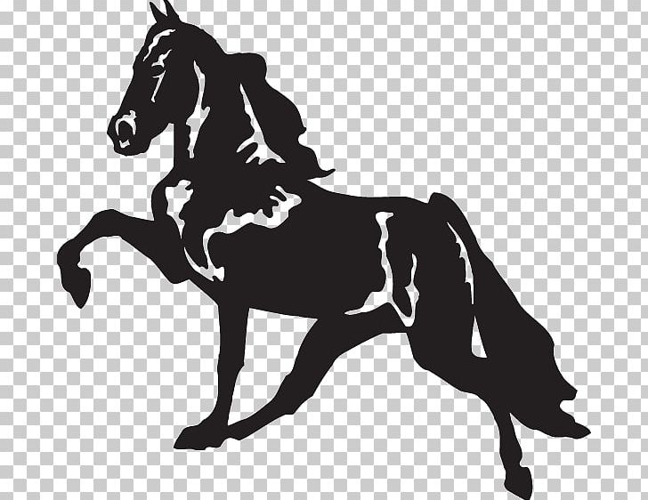 Tennessee walking horse clipart free graphic royalty free library Tennessee Walking Horse Decal Racking Horse Bumper Sticker ... graphic royalty free library