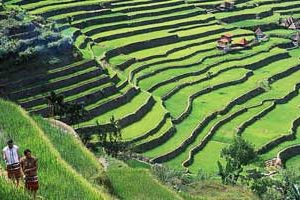 Terracing clipart svg download Banaue rice terraces clipart 5 » Clipart Station svg download