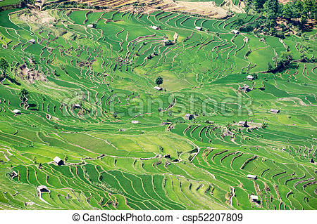 Terracing clipart image black and white library Yuanyang Rice Terraces, Yunnan - China image black and white library