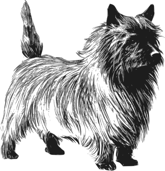 Terrier dog clipart image black and white Cairn Terrier Drawing Clip Art at Clker.com - vector clip art online ... image black and white