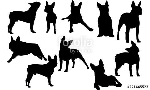 Terrier silhouette clipart svg black and white Boston Terrier Dog svg files cricut, silhouette clip art ... svg black and white