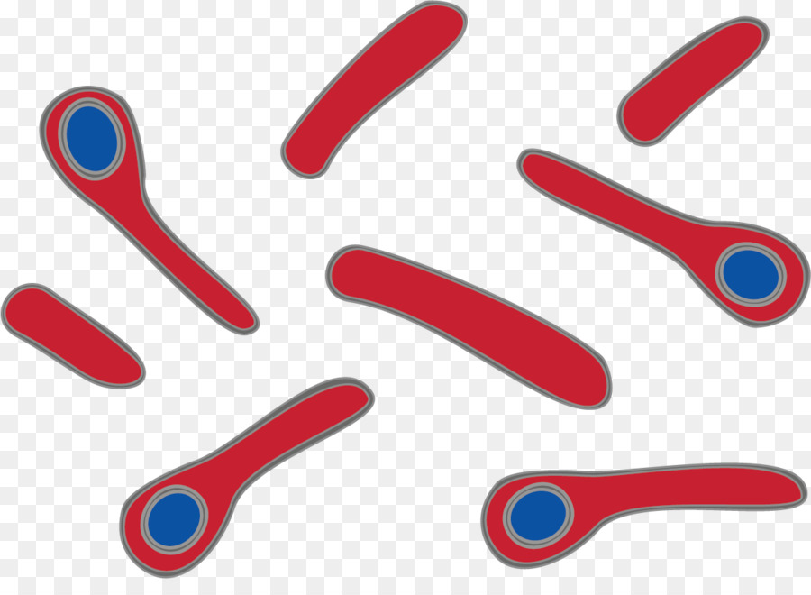 Tetanus clipart banner library library Bacteria Cartoon clipart - Red, Font, Line, transparent clip art banner library library