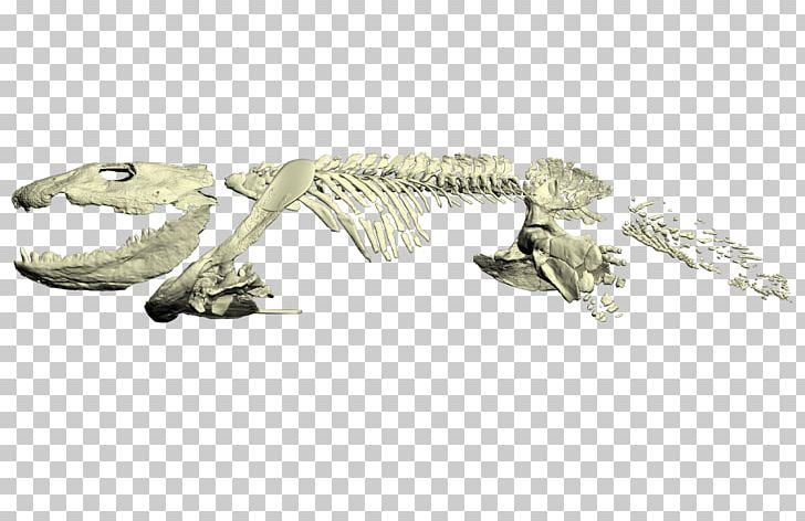Tetrapods clipart banner free library Ichthyostega Reptile Late Devonian Extinction Amphibian ... banner free library