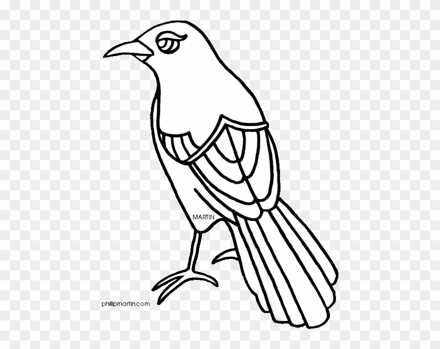 Texas bird clipart black and white siloette vector download Texas Mockingbird Clipart - Texas State Bird Drawing - Png ... vector download