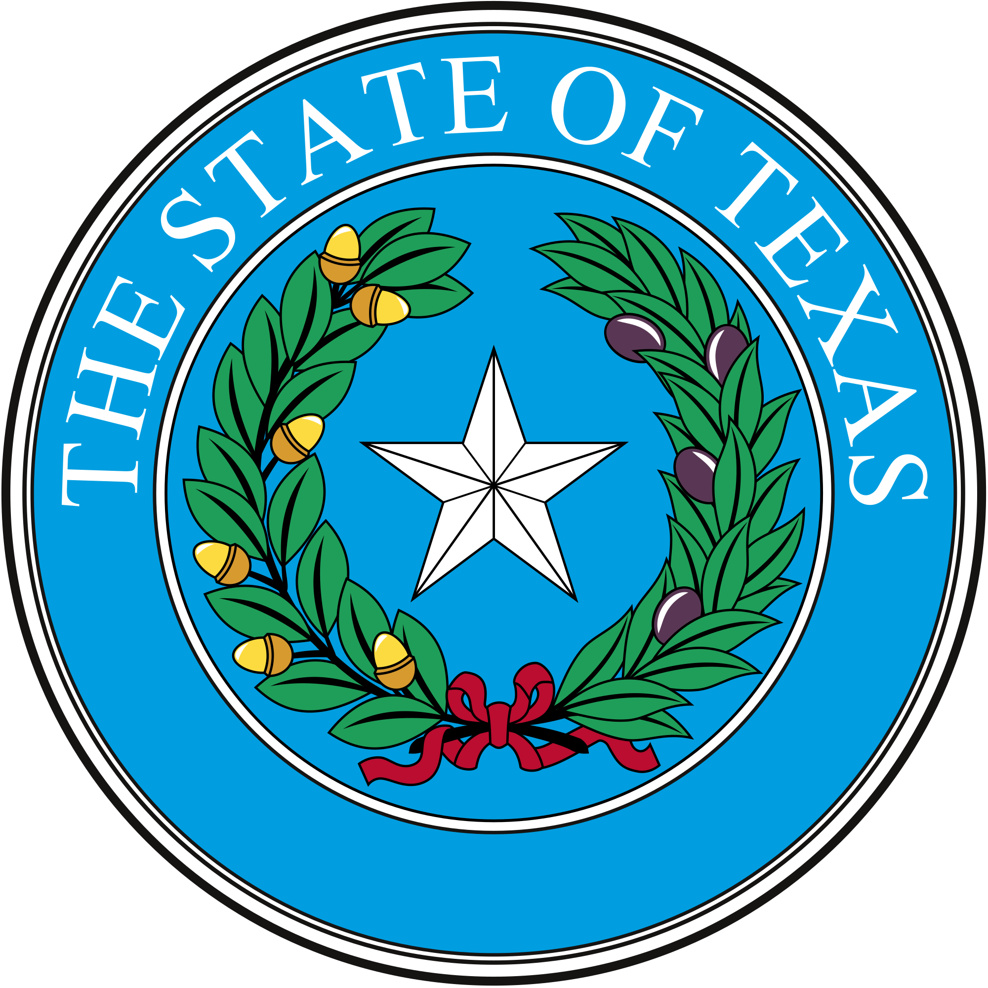 Texas house of repersentive clipart png transparent library Texas Legislature - Wikipedia png transparent library