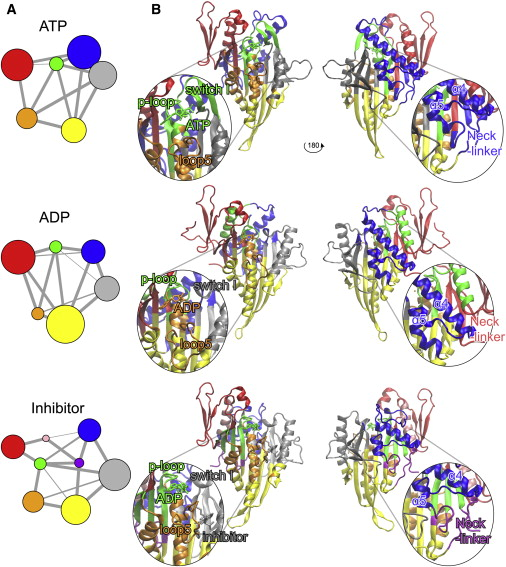 Text dependent analysis clipart clip Community analysis reveals nucleotide- and inhibitor ... clip